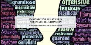 Inconsistent Behavior in Soulmate Relationships