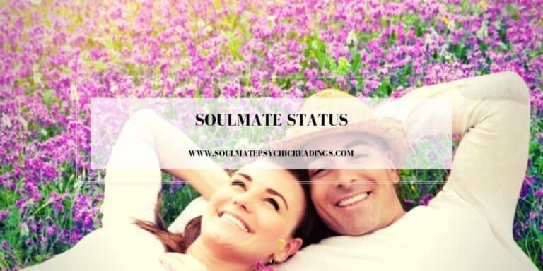 Soulmate Status